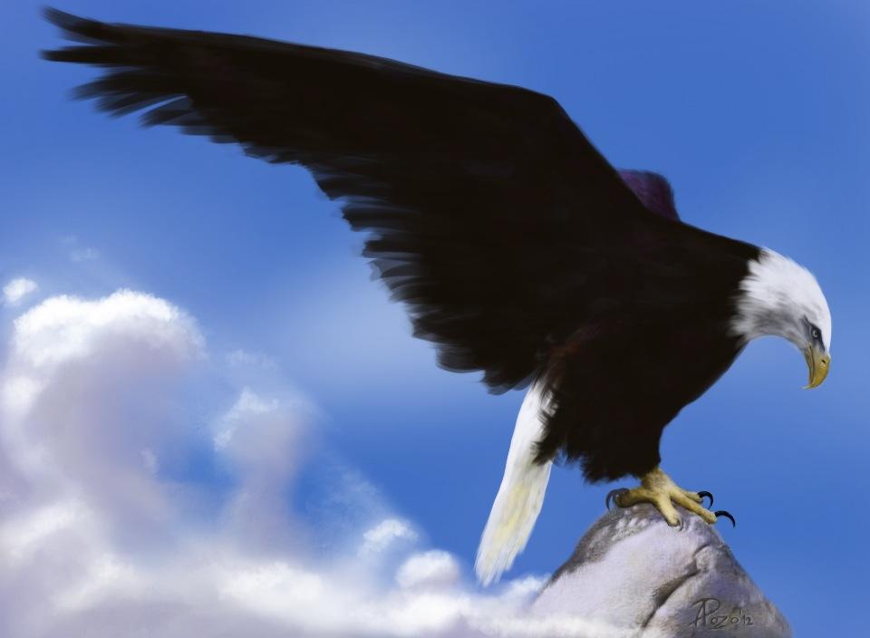 Aguila libertad Alex Pozo