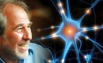 Epigenética Conductual. Bruce Lipton